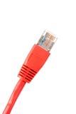 Câble rouge de réseau Images libres de droits
