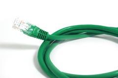 Câble vert d'UTP Photographie stock