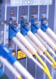 Câbles à fibres optiques images libres de droits