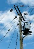 Câbles à haute tension et transformateur de courant électrique vu érigés sur un poteau en bois Photos libres de droits