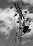 Câbles à haute tension et transformateur de courant électrique vu érigés sur un poteau en bois Photographie stock
