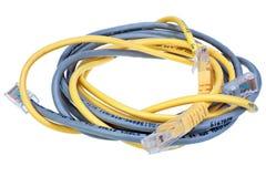 Câbles bleus et jaunes de réseau d'isolement sur le fond blanc Image libre de droits