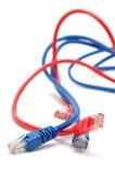 Câbles bleus et rouges de réseau Photographie stock