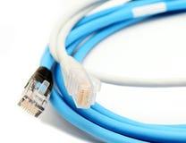 Câbles d'Ethernet de couleur photographie stock