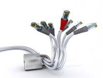 Câbles d'Ethernet sous le blocage Photos stock