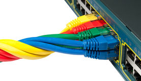Câbles d'Ethernet tordus connectés au commutateur Photo stock