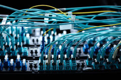 Câbles d'Internet étant reliés au panneau de commutateur Photo libre de droits