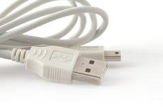 Câbles d'ordinateur avec des connecteurs Image stock