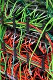 Câbles de correction de réseau Images libres de droits