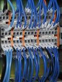 Câbles de réseau Images stock