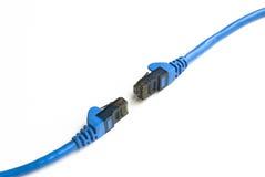 Câbles de réseau Photo libre de droits
