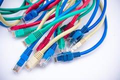 Câbles de réseau Image libre de droits