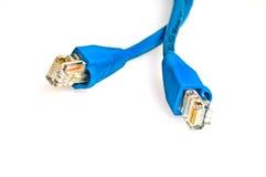 Câbles de réseau Photographie stock