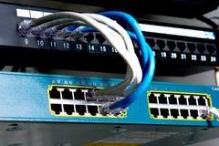 Câbles de réseau connectés à un commutateur Photographie stock libre de droits