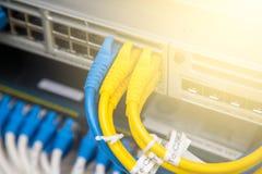 Câbles de réseau connectés Image stock
