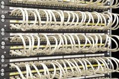 Câbles de réseau connectés au commutateur Photos libres de droits