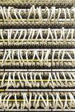 Câbles de réseau connectés au commutateur Image stock