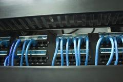 Câbles de réseau dans l'armoire Photos libres de droits