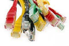 Câbles de réseau de couleur photographie stock libre de droits