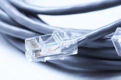 Câbles de réseau et de correction Images libres de droits