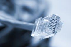 Câbles de réseau et de correction Image stock