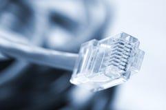 Câbles de réseau et de correction Images stock