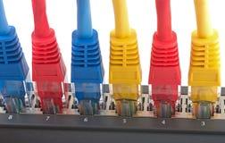 Câbles de réseau reliés au routeur Images libres de droits