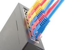 Câbles de réseau reliés au routeur Photos libres de droits