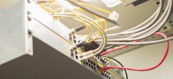 Câbles de réseau reliés aux ports d'Ethernet images libres de droits