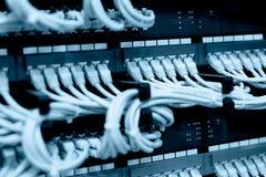 Câbles de réseau reliés dans des commutateurs de réseau Photo stock