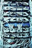Câbles informatiques de correction de serveur de réseau Photo stock