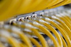 Câbles jaunes d'UTP reliés sur le tableau de connexions image libre de droits