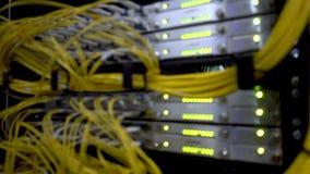 Câbles jaunes optiques de fibre à bande large de télécommunication r Le vert de lueur mené allume l'ordinateur géant brouillé clips vidéos