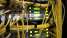 Câbles jaunes optiques de fibre à bande large de télécommunication r Le vert de lueur a mené l'ordinateur géant brouillé par lumi banque de vidéos