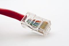 Câbles LAN d'ordinateur rouges Photographie stock libre de droits