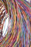 Câbles multicolores d'ordinateur de réseau Photographie stock libre de droits