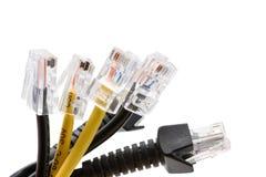 Câbles noirs et jaunes de réseau Image stock