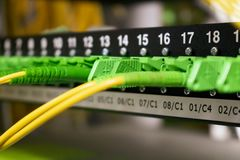 Câbles optiques de fibre, Internet, communication, réseau image libre de droits