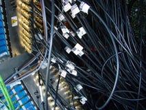 Câbles pour le reseach physique Photo libre de droits