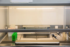 Câmara da incubação Fotografia de Stock Royalty Free