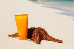 Câmara de ar do tan dos Starfish e de sol Fotografia de Stock Royalty Free