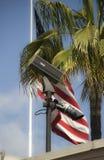 Câmara de vigilância e bandeira Fotografia de Stock Royalty Free