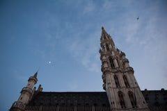Câmara municipal de Bruxelas Foto de Stock