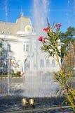 Câmara municipal de Pitesti, Arges, Romênia imagem de stock royalty free