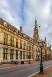 Câmara municipal de Stadhuis, Leiden, Países Baixos imagens de stock royalty free