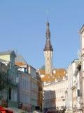 A câmara municipal de Tallinn Foto de Stock Royalty Free