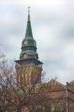 Câmara municipal em Subotica imagens de stock