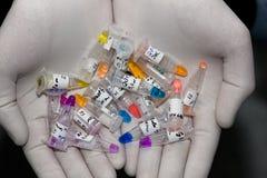 Câmaras de ar com líquidos multi-colored nas mãos Imagem de Stock Royalty Free