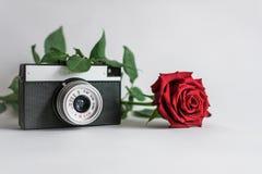 Câmera com flores em um fundo branco fotos de stock