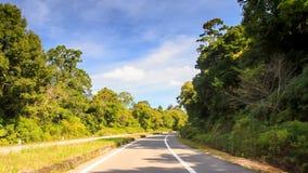 A câmera curva a linha separada da estrada no lado da sombra após plantas video estoque